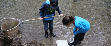 students catching crayfish at Claremont Field Centre