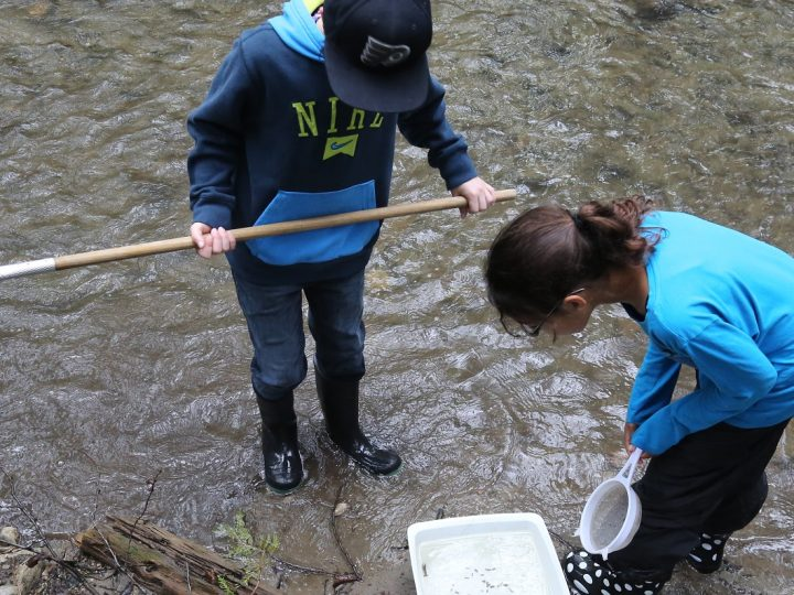 From the Parkhill Gazette: Teaching City Students to Catch Crayfish